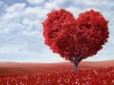Albero cuore con scritta